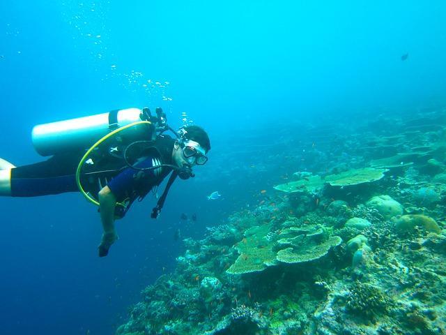 Camping pour faire de la plongée sous-marine