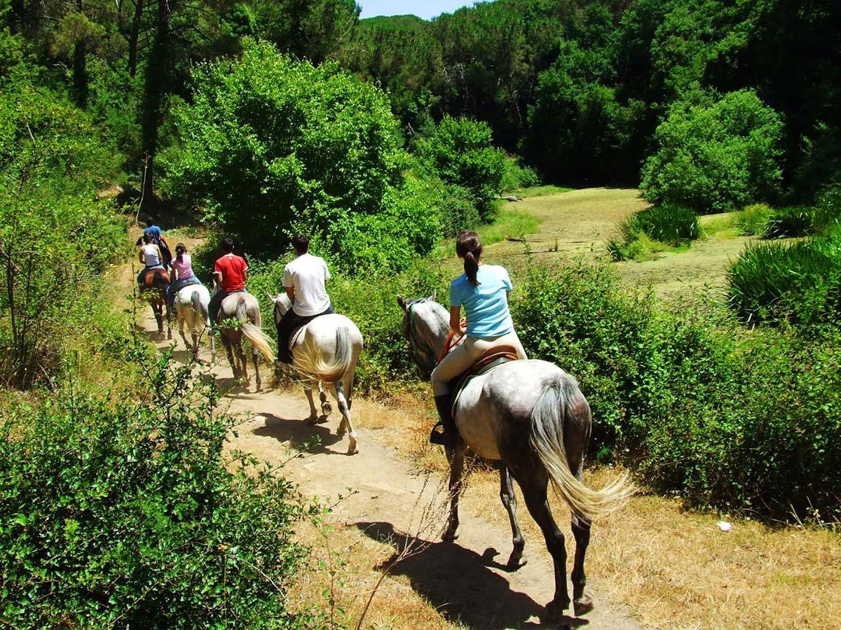 camping pour faire du cheval activités équestres